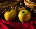 Apples - Flickr - Southernpixel - Alby Headrick.jpg