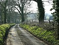 Approaching Beans Land Farm - geograph.org.uk - 1236147.jpg