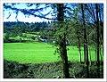 April Hochschwarzwald Freiburg im Breisgau - Mythos Black Forest Photography 2013 - panoramio.jpg