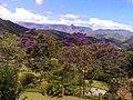 Araras, Petrópolis - RJ, Brazil - panoramio (2).jpg