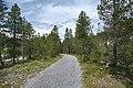 Arosa - trail 6.jpg