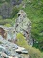 Arpa canyon Emma YSU (4).jpg