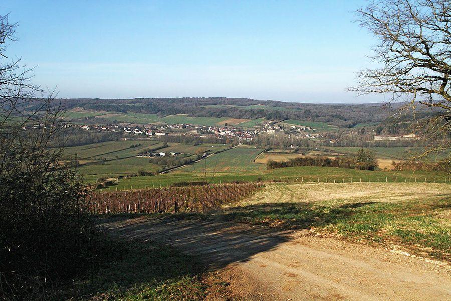 Le village d'Asquins vu du vignoble