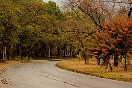 Ataturk Avenue - Islamabad