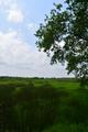 Ausblick beim Ewigen Meer, Eversmeer, Niedersachsen.png