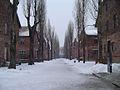 Auschwitz winter.jpg