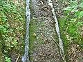 Ausgefahrene Geleise im Nagelfluh - panoramio.jpg