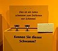 Ausstellungseröffnung -Westfalen hilft Köln-, Stadtmuseum Münster-0190.jpg