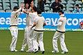 Australia v England (2nd Test, Adelaide Oval, 2013-14) (11287589675).jpg