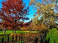 Autumn Colors at the Executive Mansion - panoramio.jpg