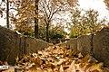 Autumn in Eram Garden 2019-12-09 05.jpg