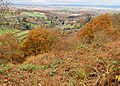 Autumn on Coppett Hill - geograph.org.uk - 1047984.jpg