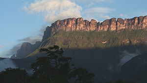 Auyán-tepui - Auyán Tepui seen at dusk from Campo Uruyen