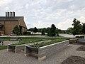 BGSU Campus Community Garden.jpg