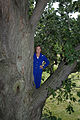 BOZE Photo Tree 2008 (final).JPG