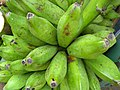 Banana of Kallidaikurichi.jpg