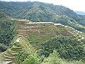 Banaue Viewpoint (3294291313).jpg
