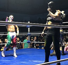 Bandido and Flamita in Querétaro.jpg