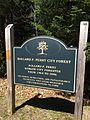 Bangor City Forest.jpg