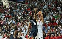 Basketball World Cup 2010 Turkey.jpg