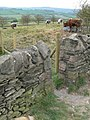 Beacon Hill - geograph.org.uk - 409984.jpg