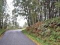 Bend in Glen Affric road - geograph.org.uk - 1551135.jpg