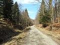 Bielawa, Poland - panoramio (4).jpg