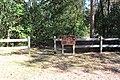 Big Shoals State Park, Long Branch Trail begin.jpg
