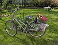Bike with Flowers.jpg