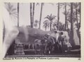 Bild från familjen von Hallwyls resa genom Egypten och Sudan, 5 november 1900 – 29 mars 1901 - Hallwylska museet - 91585.tif