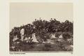 """Bild ur Johanna Kempes samling från resan till Algeriet och Tunisien, 1889-1890. """"Tunis - Hallwylska museet - 91819.tif"""