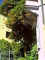 Black September Federal Republic of Germany - Fribourg Constitution Division - Master Habitat Rhine Valley Photography 2013 Cyberwar Utah - Flowers Mexiko Trompetenblume - Die Erschießung von Maximilian - panoramio.jpg
