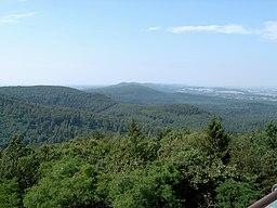 Blick-über-den-Teutoburger-Wald2