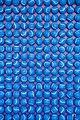 Blue (45135693732).jpg