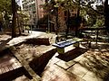 Bogota - arboles parque Rosales, avenida Circunvalar.JPG