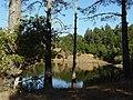 Bon Tempe lake (294921350).jpg