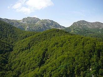 Nalón (comarca) - Redes Natural Park