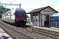 Bossiere 310509.jpg