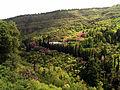 Botanic Garden, Tbilisi.jpg