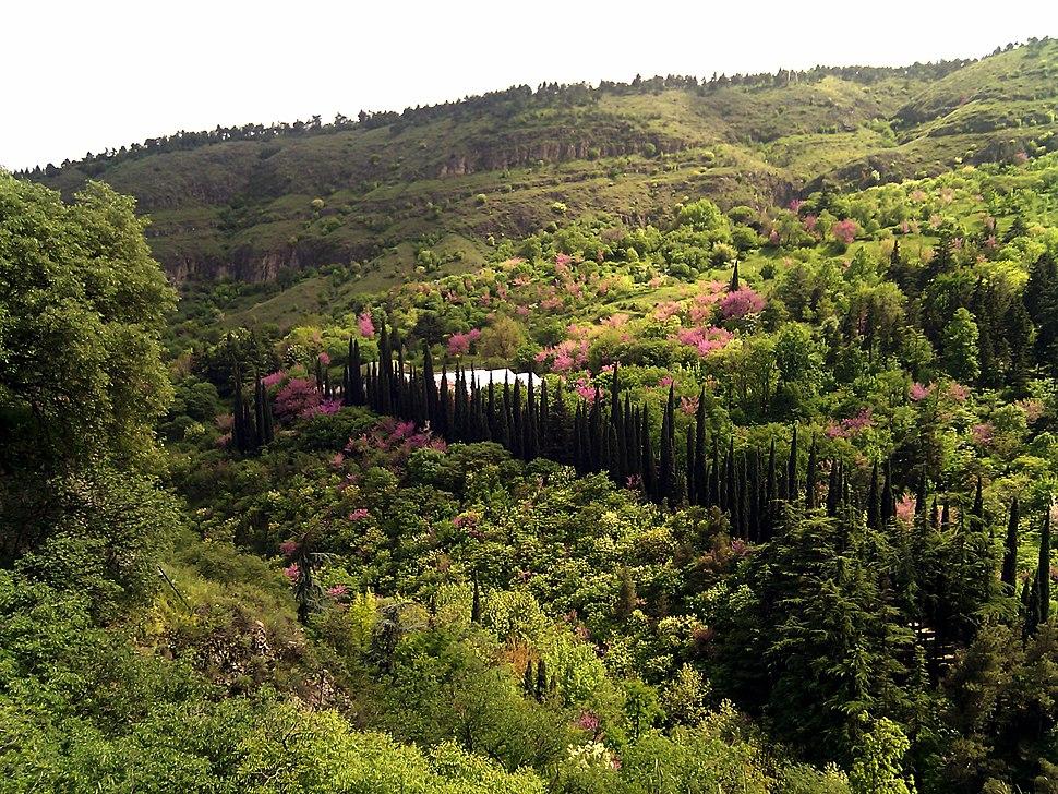 Botanic Garden, Tbilisi