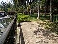 Botanical Garden in Putrajaya, Malaysia 12.jpg