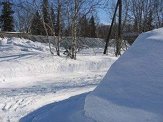 Murmansk Oblast - Image: Botanischer Garten in Kirovsk