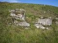 Boulders - geograph.org.uk - 952084.jpg