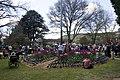 Bowral NSW 2576, Australia - panoramio (12).jpg