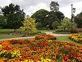 Brisbane City Botanic Gardens (05).jpg