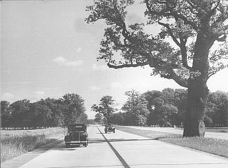 Reichsautobahn - Berlin - Munich Reichsautobahn, today's A9, southeast of Dessau, photographed in 1939. The oaks were intentionally retained in the median.