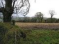 Bunnamayne Townland - geograph.org.uk - 1037582.jpg