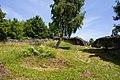 Burg-Hopfen-JR-E-5348-2021-06-28.jpg