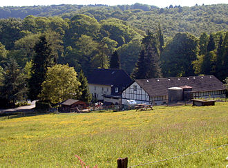 Bergisches Land - View of the woods of Burg with a typical Bergisches farmhouse