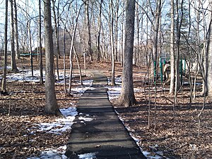 Burke Centre, Virginia - Path in the woods, Burke Centre